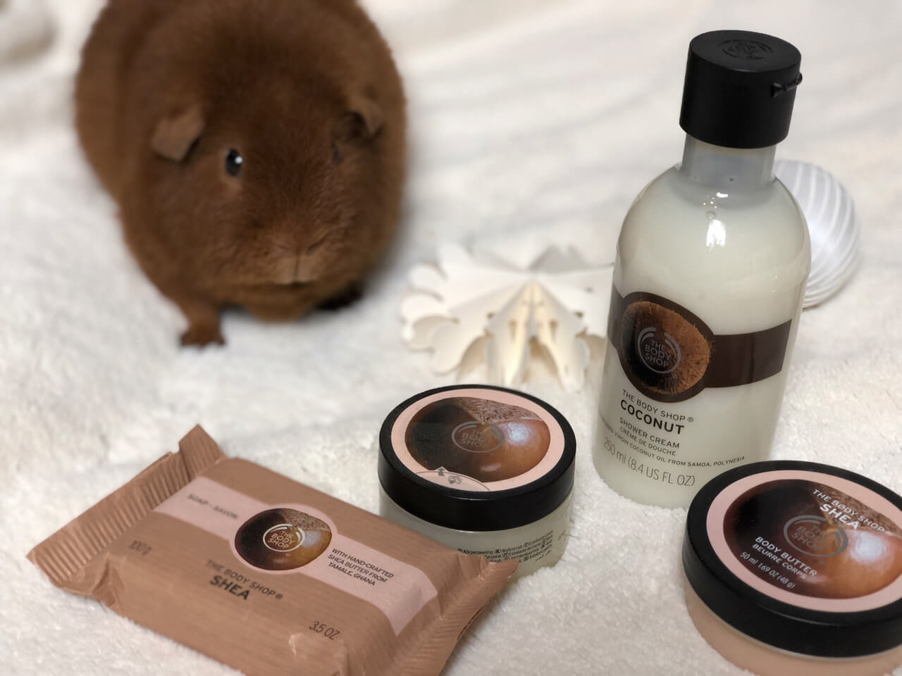 The Body Shop Pflegeset