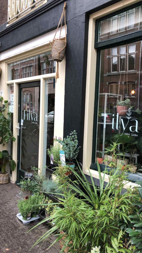 Filya Indoor Garden außen