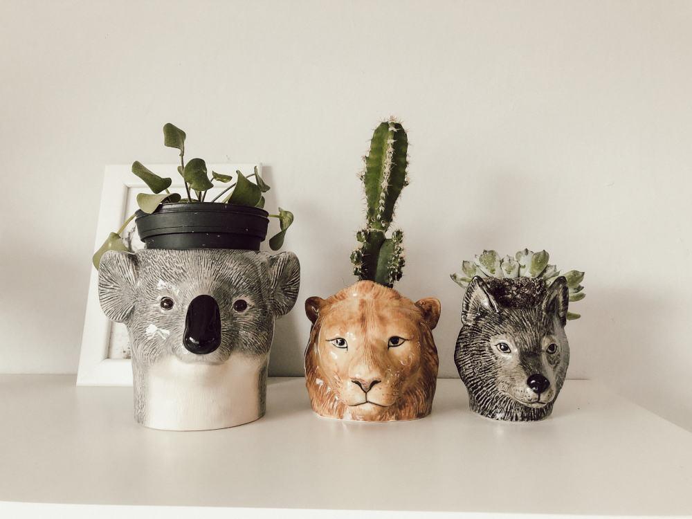 Quail Ceramics Blumentöpfe